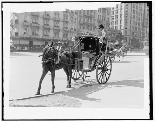 fiacre au Madison Square en 1900