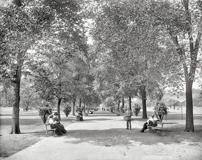 1900 – Chicago, a walk in Lincoln Park