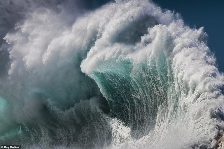 Nikon Surf Photo of the Year 2020